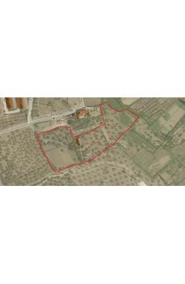 LAND AND HOUSE  ALFANO – CONTRADA CIANCIANIA