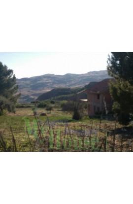 VILLA PERZIA - PROPERTY IN SICILY