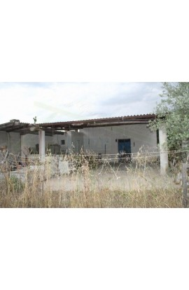 HOUSE AND LAND GRIMALDI CDA BUTERA SALINA - PROPERTY IN SICILY