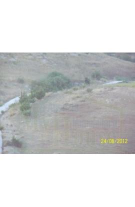 LAND PUGLISI - ERACLEA MINOA (AG) - PROPERTY IN SICILY