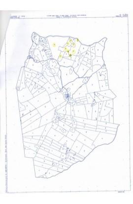 LAND BRIGNOLA – CDA FERRARIA