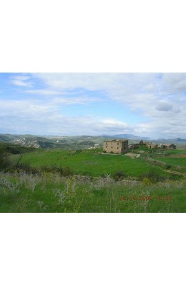 HOUSE AND LAND GAGLIANO BISSANA - PROPERTY IN SICILY