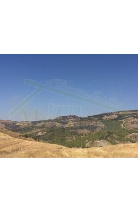 LAND FEUDO ALESSANDRIA - PROPERTY IN SICILY