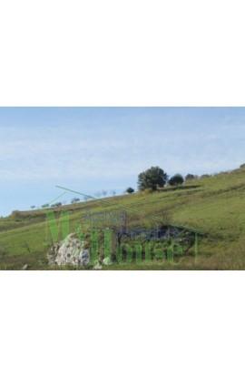 LAND FERRO CONTRADA QUARTO DI ROCCHI - PROPERTY IN SICILY