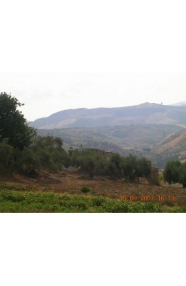 TERRENO TAMBURELLO - PROPERTY IN SICILY