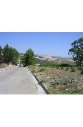 LAND PLOT CONTRADA SERRA - PROPERTY IN SICILY