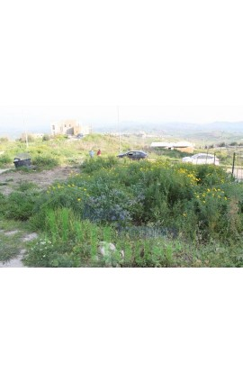 PLOT IN RAFFADALI - PROPERTY IN SICILY