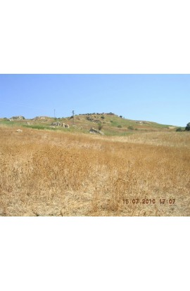 TERRENO CANNATELLA CDA FEOTTO - PROPERTY IN SICILY