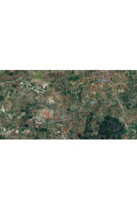 LAND WITH FOREST GENTILE – CDA MILLAGA